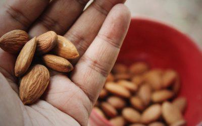 Grignoter malin et sain avec des fruits à coques